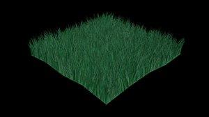 green grass 3d max