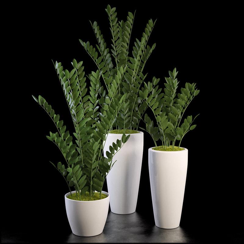 zz plants set 3d max