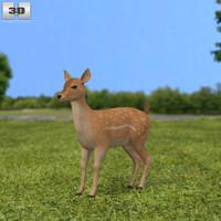 fallow fawn deer 3d 3ds