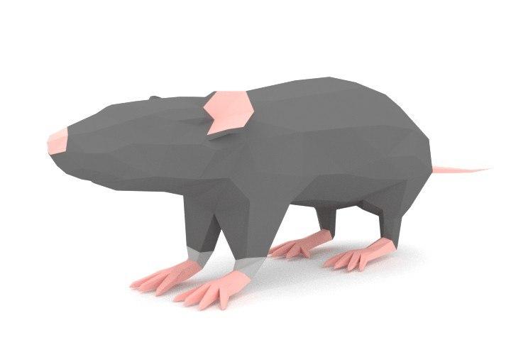 3d model blender rat