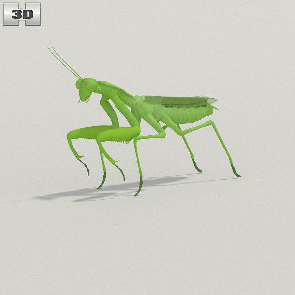 mantis max