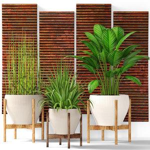 plants pot ma