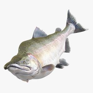 3ds pink salmon swiming pose