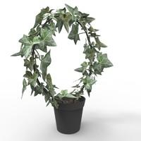 ivy plant 3d max