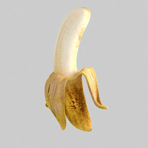 banana fruit max