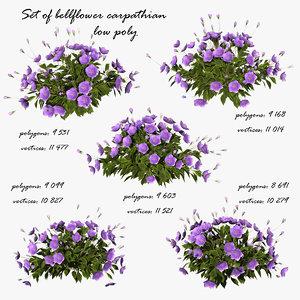 3d model plant bellflower carpathian
