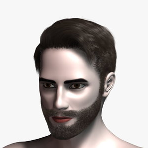 3d virtual hair 15 model