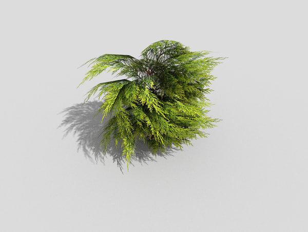 shrub 3d model