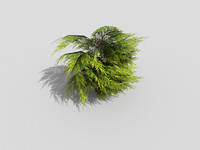 low poly shrub