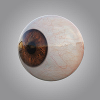 3d human brown eye
