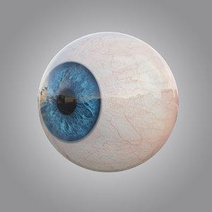 human blue eye 3d max