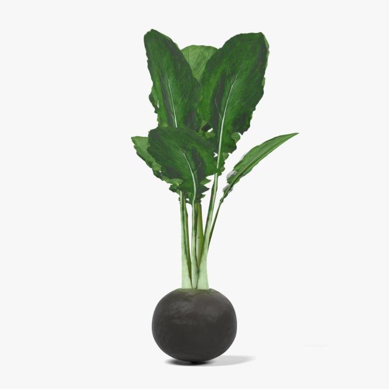 3ds black radish