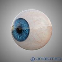 Human eye animated