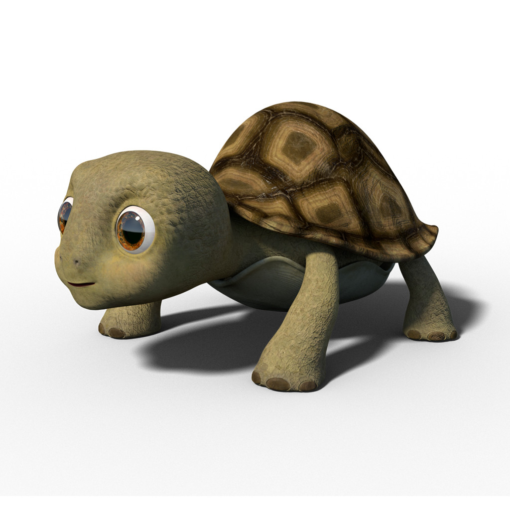 3d model of turtle litlle