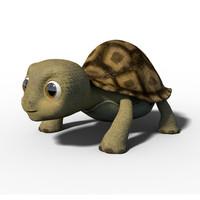 litlle turtle