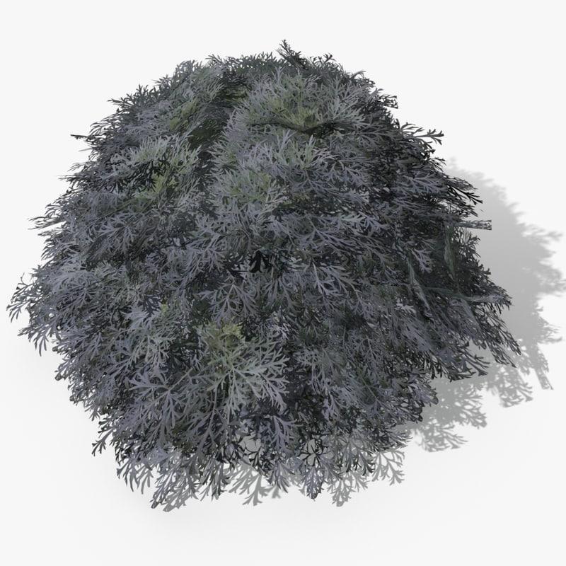 artemisia plants 3d 3ds