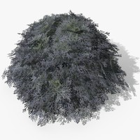 artemisia plants 3d 3ds