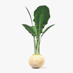 white radish 3d 3ds