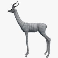 3d gerenuk antelope