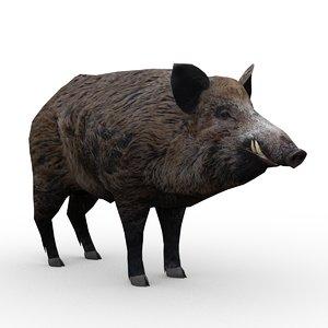 wild boar animations max