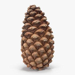 closed pine cone 3ds