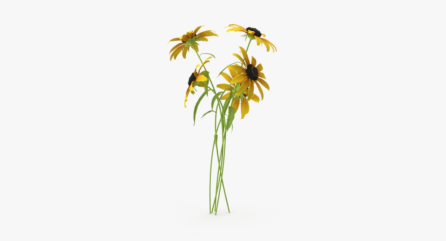 3d black eyed susan bouquet