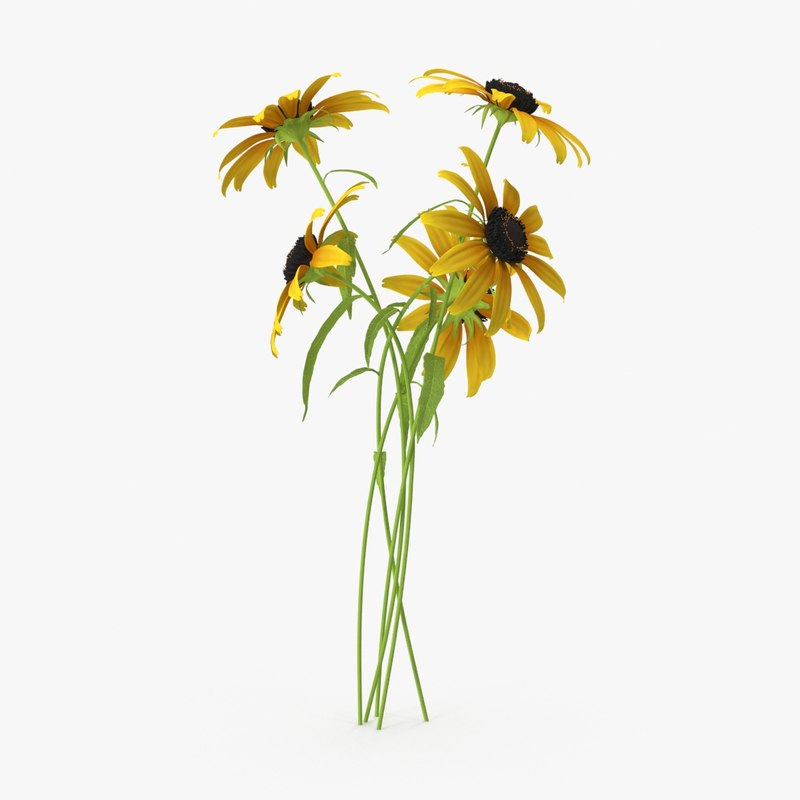 3d black eyed susan bouquet
