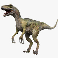 Velociraptor(Animated)(Rigged)