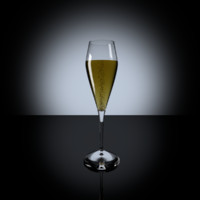 3d model of champagne glass