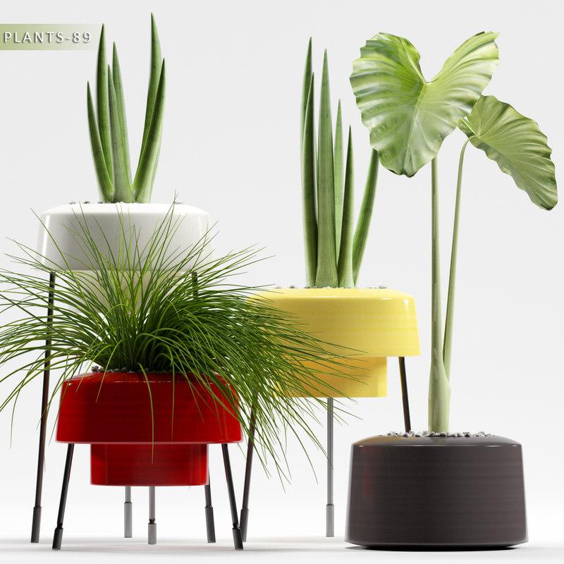 3d plants 89 model