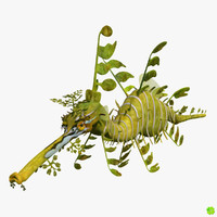 leafy sea dragon animation 3d obj