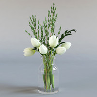 white tulips eucalyptus 3d model
