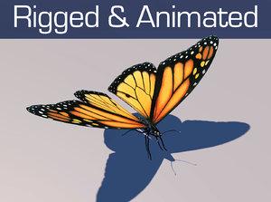 monarch butterfly animation 3d model