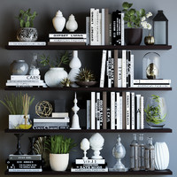 3d model books shelves decor