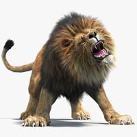 3d lion 2 fur colors model