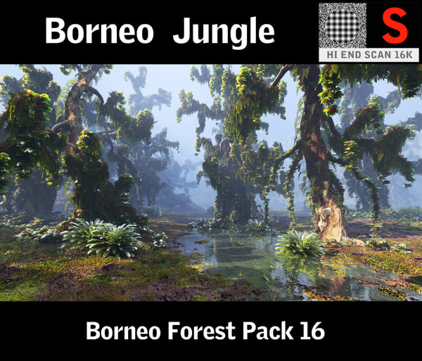3d model of borneo forest hd