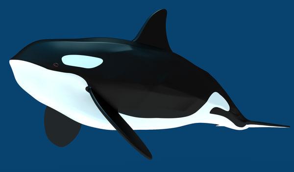 3d killer whale