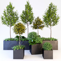 trees bushes 3d model
