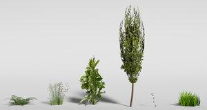 plants games blend