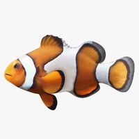 clownfish ready 3d max