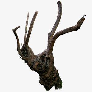 tree trunk cracky scanned 3d obj