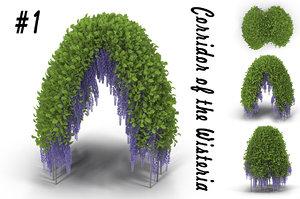 wisteria corridor flowering 3d model