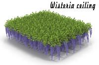 wisteria flowering 3d max