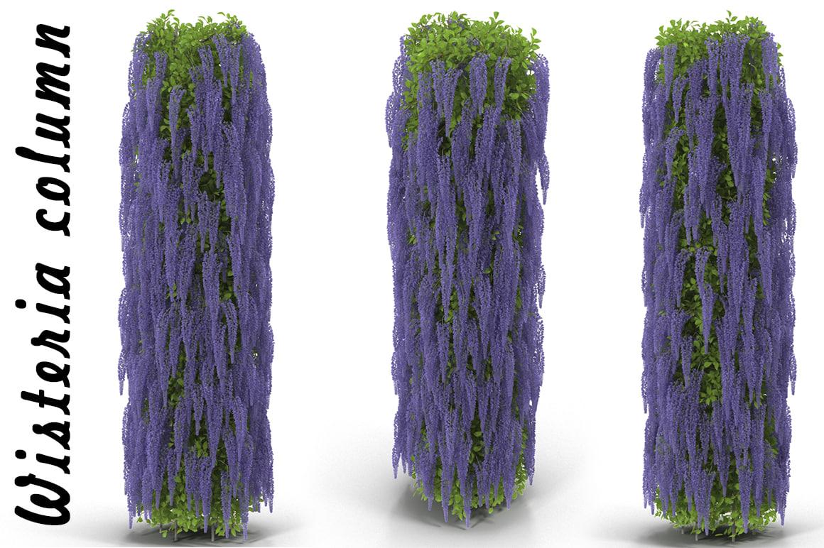 3d model of wisteria column flowering