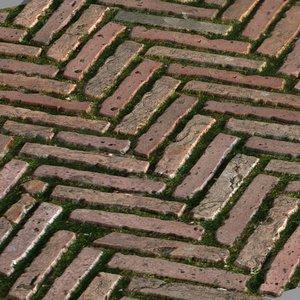 paving stones 07 3d max