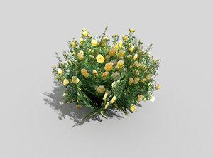 3ds tropical shrub