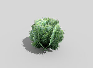 tropical shrub 3d 3ds