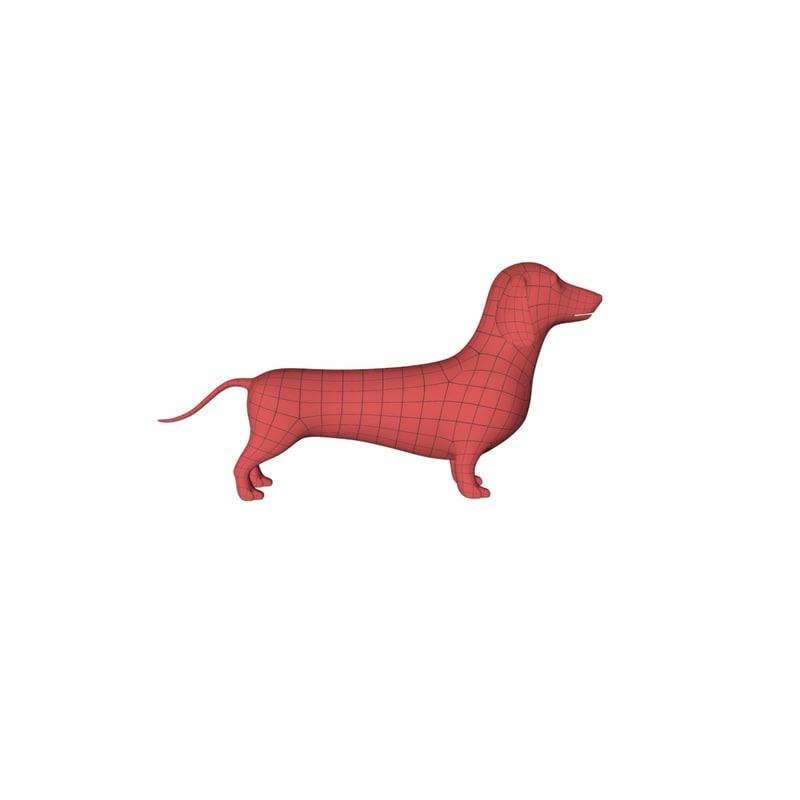 base mesh dachshund dog 3d c4d