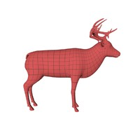 3d base mesh elk deer