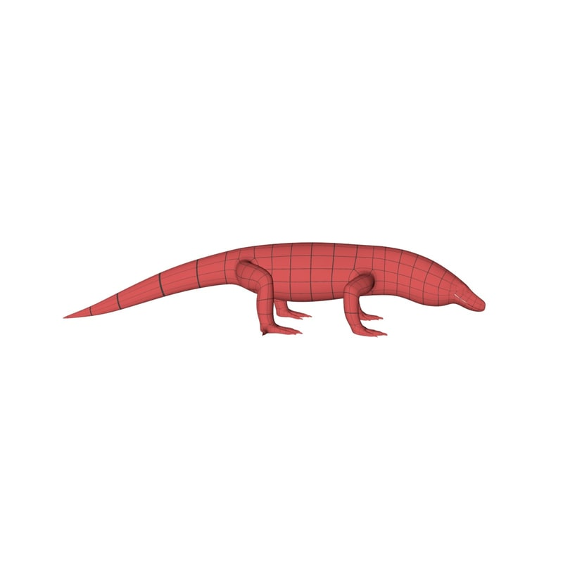 3d base mesh komodo dragon model